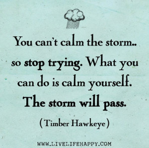 You can't calm the storm... so stop trying. What you can do is calm ...