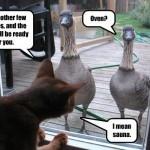 home images funny goose funny goose facebook twitter google+ pinterest ...