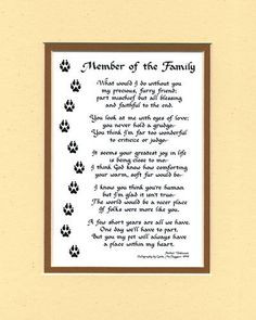 member of the family dog or cat poem more cats animales poems dogs ...