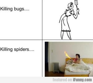 Killing Bugs.. Killing Spiders..