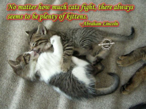 Cat Quotes Graphics, Pictures - Page 3