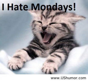 Tomorrow is monday US Humor - Funny pictures, Quotes, Pics, Photos ...