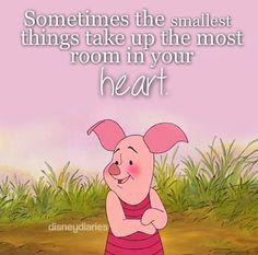 come in small packages more piggies oink brenna piglets pooh quotes ...