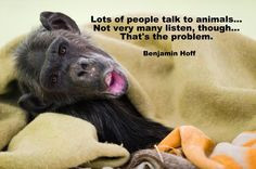 Lots Of People Talk To Animals Not Very Many Listen Though That's ...