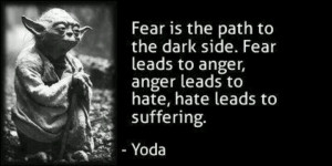 Fear is the path to the dark side. Fear leads to anger, anger leads to ...
