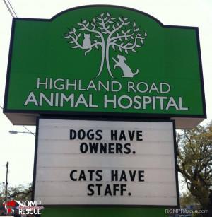 veterinarian, funny veterinarian sign, funny vet sign, funny, vet ...