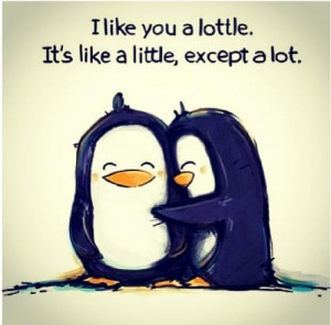 like you a lottle, it's like a little, except a lot