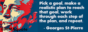 Georges St-Pierre on how to achieve success