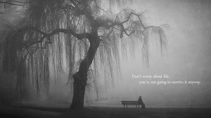 quotes bench lonely grayscale lakes wallpaper background