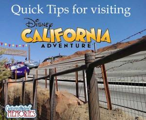 Disneyland California Adventure 's has just passed it's 13th ...