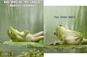 Funny Quotes About Frogs