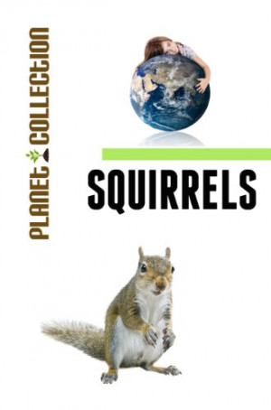 Squirrels: Picture Book (Educational Children's Books Collection ...