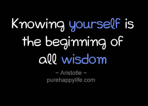 Knowing Yourself Aristotle Quotes