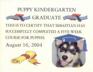 ... graduationcertificate of kindergarten preschool graduation