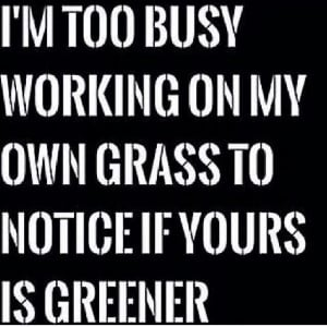 too busy working on my own grass to notice if yours is greener ...