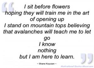 sit before flowers shane koyczan