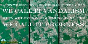 ... we destroy something by nature we call it progress.