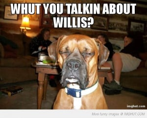 Boxer Dogs Funny Quotes Quotesgram