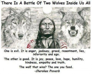 Battle of Two Wolves ... Cherokee proverb