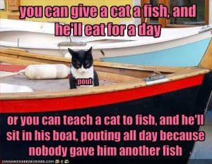 Cats and fish go together like ...well, the cats like it, the fish ...