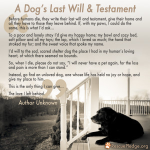 Dog's Last Will and Testament