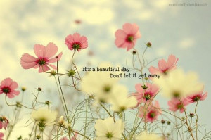 quotes quote beautiful day flowers gorgeous