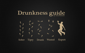 guides alcohol funny drunkness drunk 1680x1050 wallpaper Entertainment ...