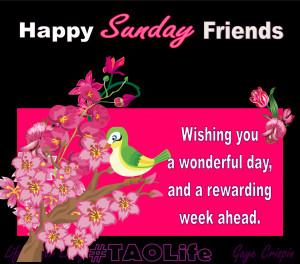 Happy Sunday friends, wishing you a wonderful day and a rewarding week ...