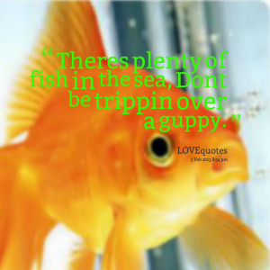 Quotes Picture: theres plenty of fish in the sea, dont be trippin over ...