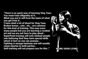 ... this image to read a very weighty quote about martial arts training