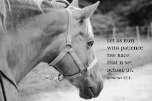 ... Horse Lover Christian art gift Encouragement Inspirational Decor Bible
