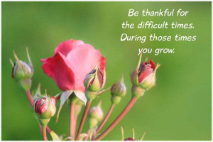 Br thankful for the difficult times. During those times you grow.