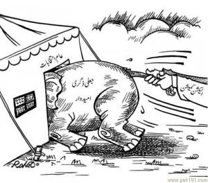 Pakistani Election 2013