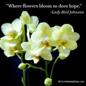 Flowers Bloom Hope