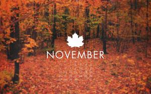 November 2011 by kriegs