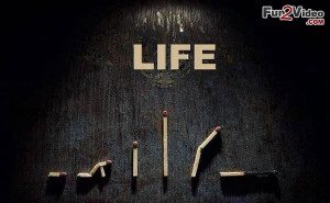 Birth To Death Life Picture [ More Life Pictures: http://www.fun2video ...