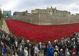 Ebay bans people from trying to sell Tower of London ceramic poppies ...
