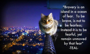 Quotes About Bravery And Courage Bravery Quote