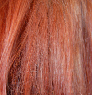 Ginger Red Hair Color