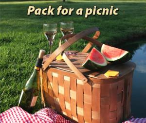 the art of picnic picnic