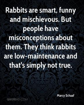 quotes about stupid people who think they are smart smart people are