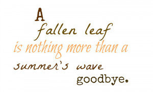 ... watch the leaves gently fall off the trees and dance in the air