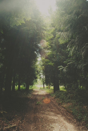 Image: www.adore-theworld.tumblr.com