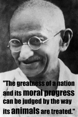 The greatness of a nation and its moral progress can be judged by the ...