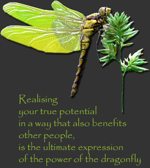 Dragonfly Quotes Image...