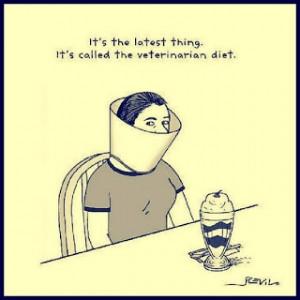 Funny Vet Diet Joke Cartoon Picture Image