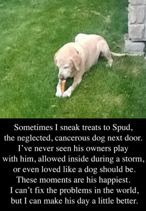The neglected dog next door…