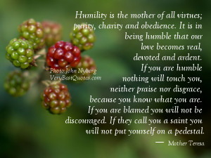 Humility is the mother of all virtues, purity, charity and obedience ...