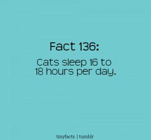 url=http://www.pics22.com/fact-quote-cats-sleep-sixteen-days/][img ...