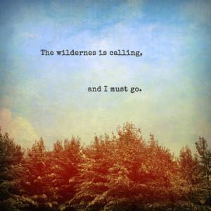 Wild Quotes 44; 0